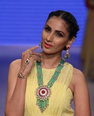Model Poses for Jewels at Preeti Show at IIJW    2015